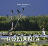 România (italiană/spaniolă)