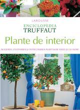 Plante de interior. Alegerea, cultivarea și întreținerea plantelor verzi și cu flori