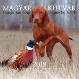 Magyar kutyák - naptár 2019